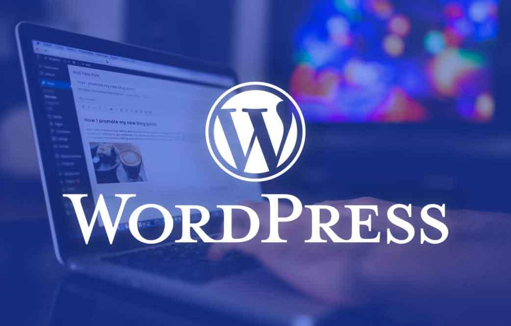 WordPress Siteleri : WordPress ile Kurulmuş, Yapılmış Siteler